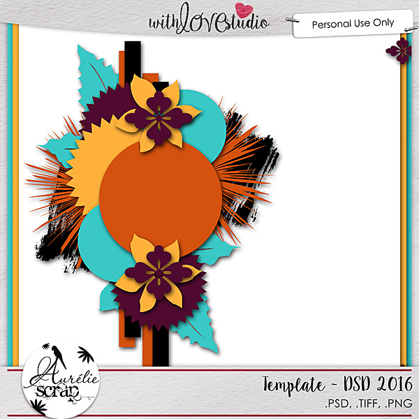 aurelie_template_dsd2016